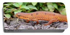 Red Eft - Close Up Portable Battery Charger by Kerri Farley