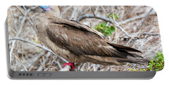 Red Footed Booby Portable Battery Charger by Jess Kraft