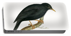 Sardinian Starling Portable Battery Charger by English School