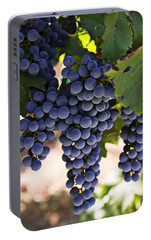 Sauvignon Grapes Portable Battery Charger by Garry Gay