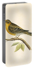 Serin Finch Portable Battery Charger by English School