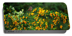 Song Sparrow Bird On Blooming Scotch Portable Battery Charger by Panoramic Images