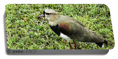 Southern Lapwing Portable Battery Charger by Norman Johnson