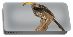 Southern Yellow-billed Hornbill Tockus Portable Battery Charger by Panoramic Images