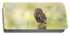 Sunken In Thoughts - Staring Little Owl Portable Battery Charger by Roeselien Raimond