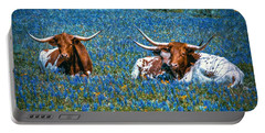 Texas In Blue Portable Battery Charger by Linda Unger