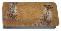 The Cheetahs Portable Battery Charger by Stephen Smith