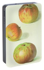 Three Apples Portable Battery Charger by English School