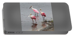 Three Roseate Spoonbills Square Portable Battery Charger by Carol Groenen