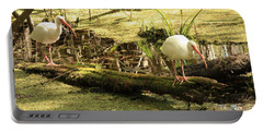 Two Ibises On A Log Portable Battery Charger by Carol Groenen