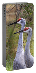 Two Sandhills In Green Portable Battery Charger by Carol Groenen