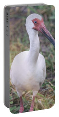 White Ibis In The Morning Light  Portable Battery Charger by Saija  Lehtonen