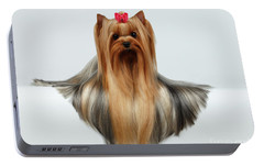 Yorkshire Terrier Dog With Long Groomed Hair Lying On White  Portable Battery Charger by Sergey Taran