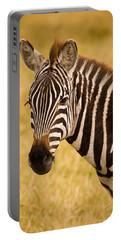 Zebra Portable Battery Charger by Adam Romanowicz