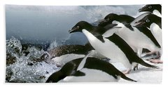 Adelie Penguins Beach Sheet by Art Wolfe