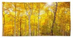 Aspen Morning Beach Sheet by Darren  White