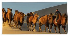 Camel Caravan In A Desert, Gobi Desert Beach Towel by Panoramic Images