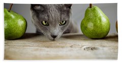Cat And Pears Beach Sheet by Nailia Schwarz