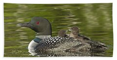 Loon Parent With Two Chicks Beach Towel by John Vose