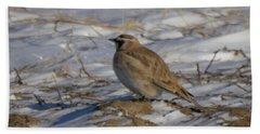 Winter Bird Beach Towel by Jeff Swan