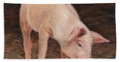 Pig Beach Towel by David Stribbling