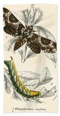 Butterflies Beach Sheet by English School
