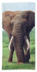 African Elephant Beach Sheet by David Stribbling