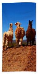 3 Amigos Beach Towel by FireFlux Studios