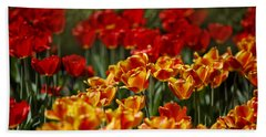 Red And Yellow Tulips Beach Sheet by Nailia Schwarz
