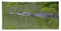 American Alligator Beach Sheet by Mark Newman