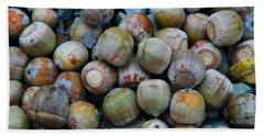 Acorns Beach Towel by Dan Sproul
