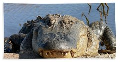 Alligator Approach Beach Sheet by Al Powell Photography USA