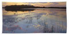 American Alligator Everglades Np Florida Beach Sheet by Tim Fitzharris