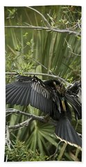 Anhinga Papa Beach Towel by Phill Doherty