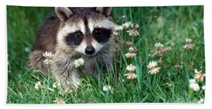 Baby Raccoon Beach Towel by Jeanne White