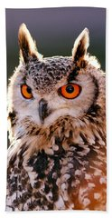 Backlit Eagle Owl Beach Towel by Roeselien Raimond