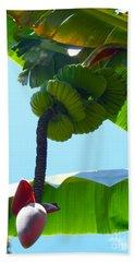 Banana Stalk Beach Sheet by Carey Chen