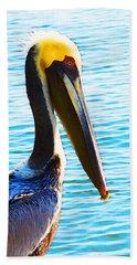 Big Bill - Pelican Art By Sharon Cummings Beach Sheet by Sharon Cummings
