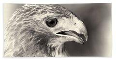 Bird Of Prey Beach Sheet by Dan Sproul