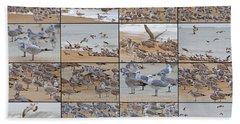 Birds Of Many Feathers Beach Towel by Betsy Knapp