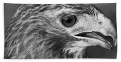 Black And White Hawk Portrait Beach Sheet by Dan Sproul