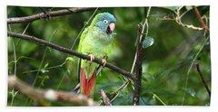 Blue Crowned Parakeet Beach Sheet by James Brunker