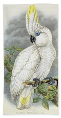 Blue-eyed Cockatoo Beach Towel by William Hart