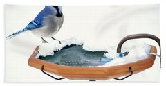 Blue Jay At Heated Birdbath Beach Sheet by Steve and Dave Maslowski
