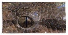 Boa Constrictor Beach Towel by Chris Mattison FLPA