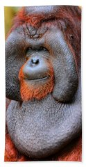 Bornean Orangutan Iv Beach Sheet by Lourry Legarde