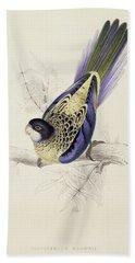 Browns Parakeet Beach Sheet by Edward Lear