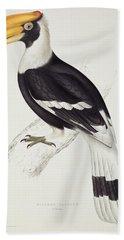 Great Hornbill Beach Sheet by John Gould