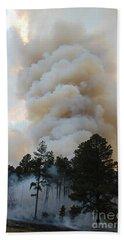 Beach Towel featuring the photograph Burnout Near Song Dog Road by Bill Gabbert