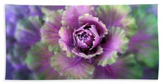 Cabbage Flower Beach Towel by Jessica Jenney